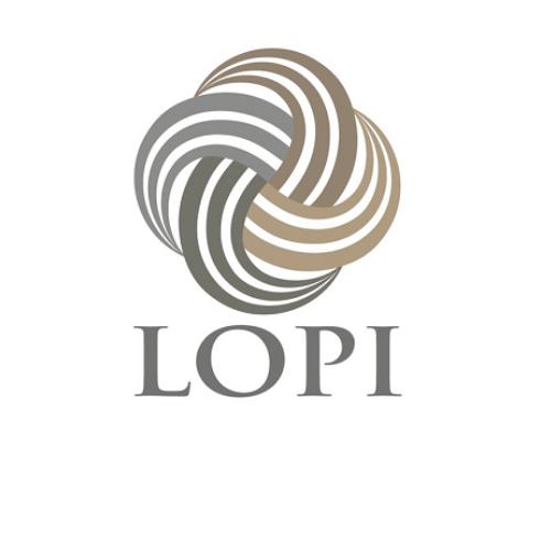 Lopi Icelandic wool