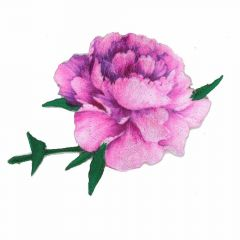 Iron-on patches Rose pink-purple - 5pcs