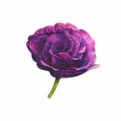 Iron-on patches Rose purple - 5pcs