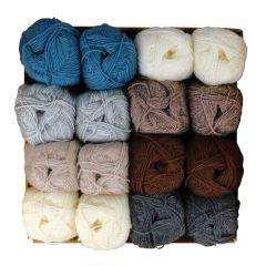Scheepjes Socky Pulli assortment 2x50g - 8 colours - 1pc
