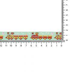 Woven ribbon trains 17mm - 24m