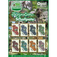 Opal Faszination Schafpate 4-ply ast. 8x5x100g - 1pc
