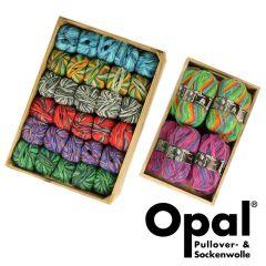 Opal Regenwald assortment 5x100g - 8 colours - 1pc