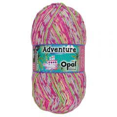 Opal Adventure 4-ply 10x100g