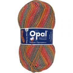 Opal Cotton Premium 2020 4-ply 8x100g