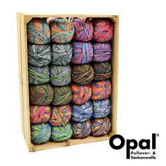 Opal Assortment 4-ply 2x100g - 12 colours - 1pc